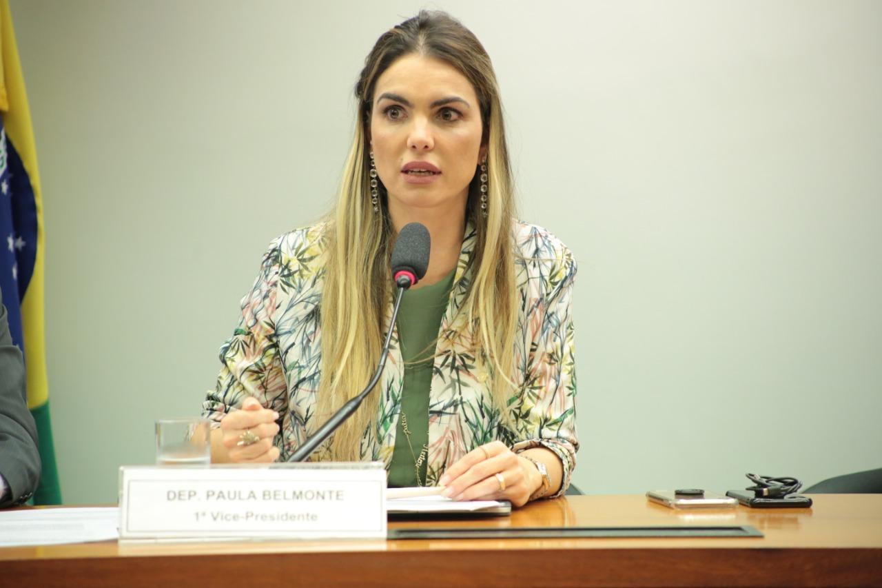 CPI do BNDES aprova requerimentos de Paula Belmonte
