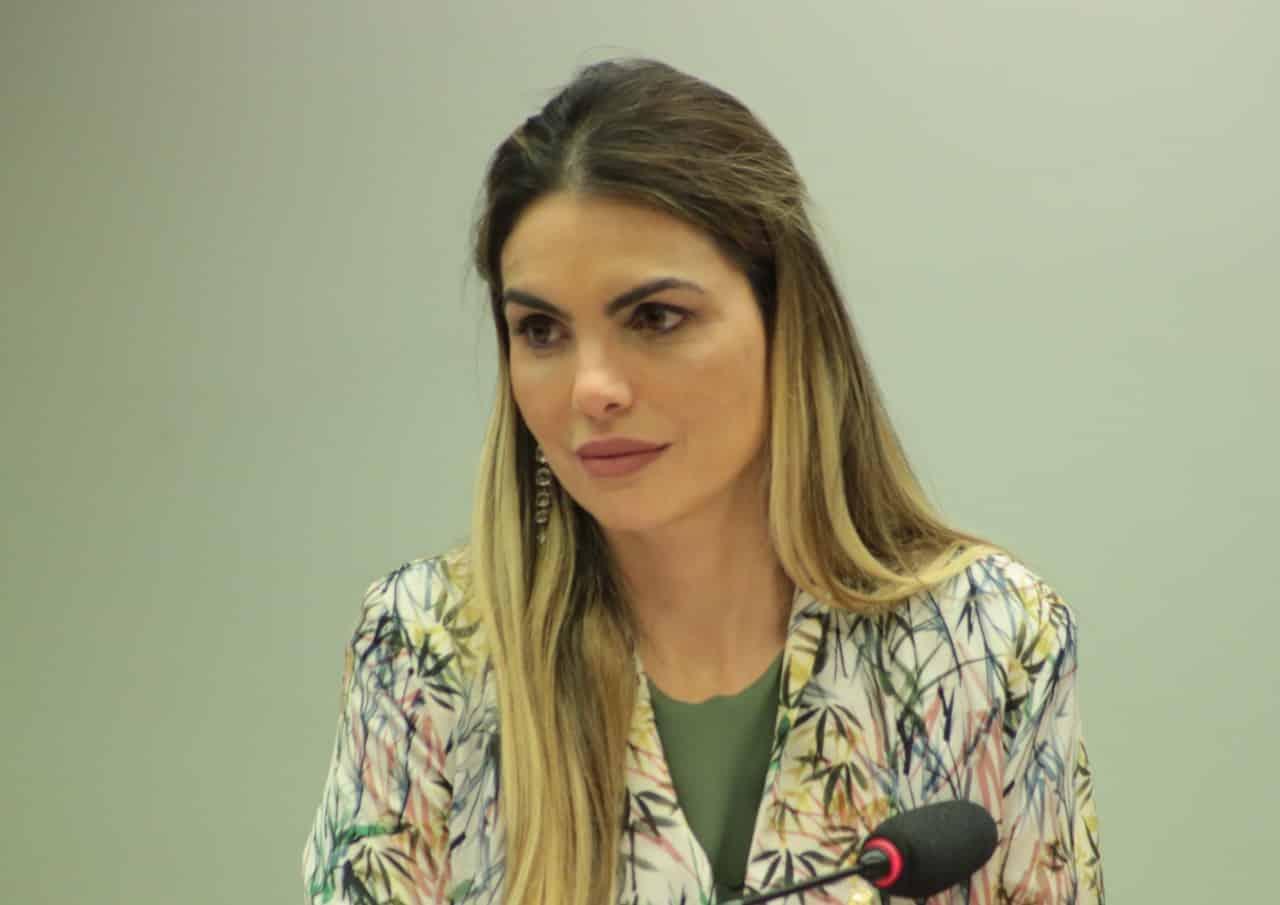 Em reunião com o TCU, Paula Belmonte defende fiscalização e transparência