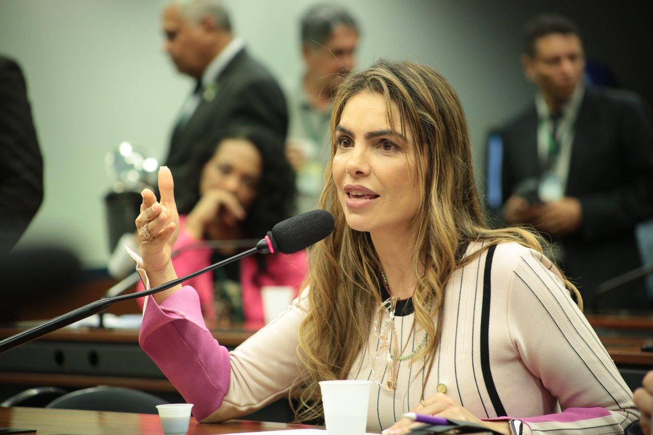 Cidadania vota favorável a reajustes de forças policiais do DF